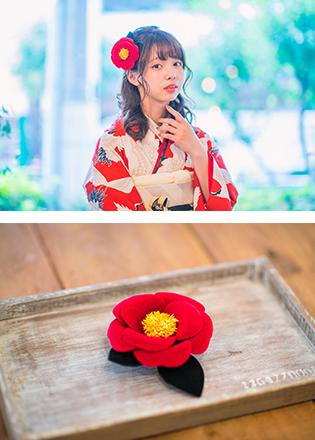 赤と鶴と椿 イメージ